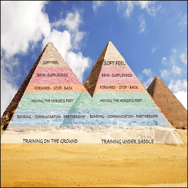 trainingScale
